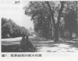 81_早期(1960〜1970年)威斯康新大學 台灣學生在台灣建國運動所扮演的角色_圖1