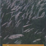 1151. 土 / 許達然 /-/1979/Literature/文學