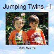 1230. Jumping Twins - I / 朱耀源 /05/2018/Life/生活
