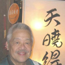 95. Collection of the Dr. Taitzer Wang 王泰澤博士的收藏